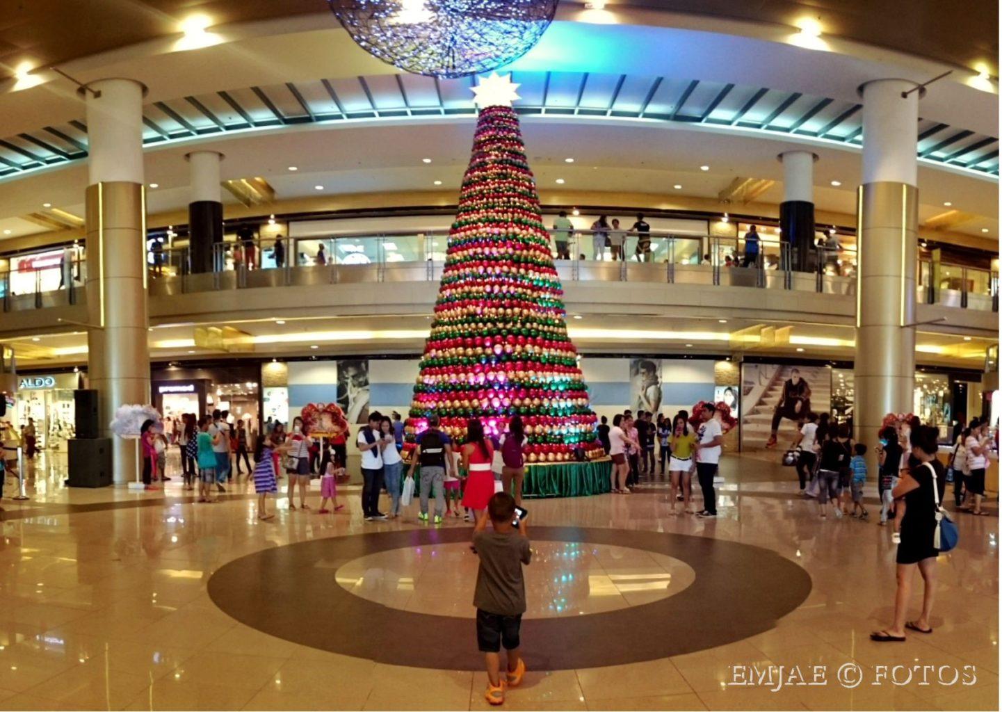 Wonderful Christmas Trees Around The City