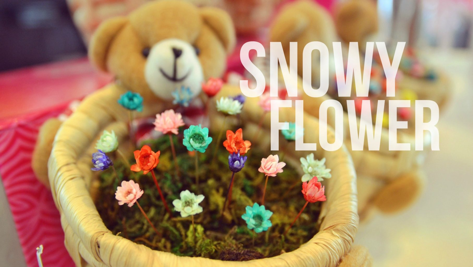 Snowy Flower : A Flower That Lasts for 10 Years | Cream of the Craft