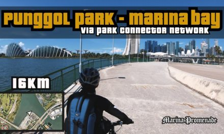 16KM Punggol Park to Marina Bay via PCN (Park Connector Network)