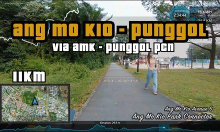 11KM Ang Mo Kio to Punggol Waterway via Coast to Coast Trail