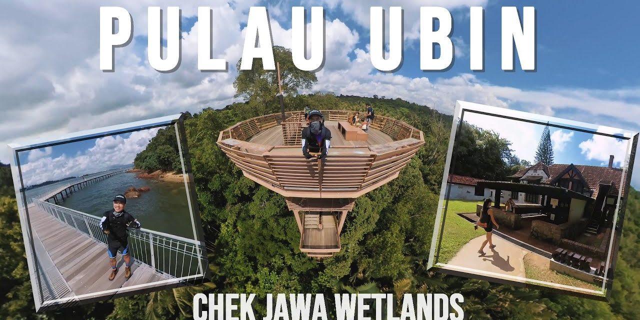 Tour: Chek Jawa Wetlands in Pulau Ubin Singapore | Jejawi Tower