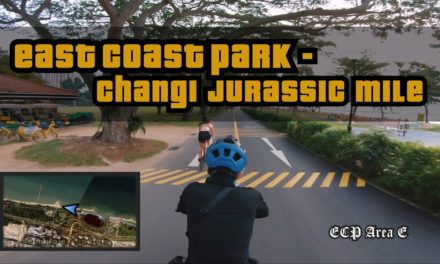 8KM East Coast Park to Changi Jurassic Mile Cycling Route